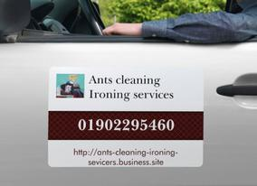 Ants cleaning Ironing services